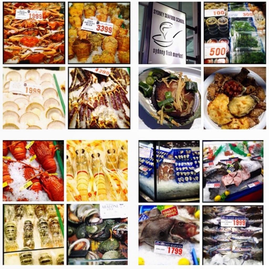 Por aí, no Mercado de Peixes de Sydney.