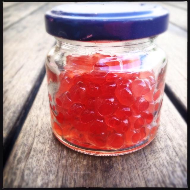 caviar de morango 18