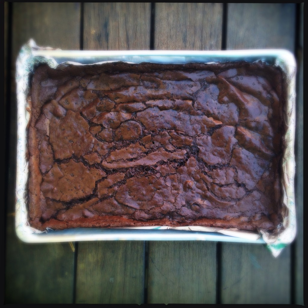 brownie –  às vezes é só o que você precisa