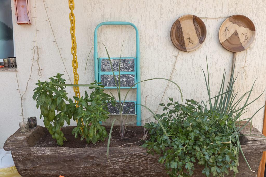 horta urbana 141019_Receitas_Lá_em_Casa_0042