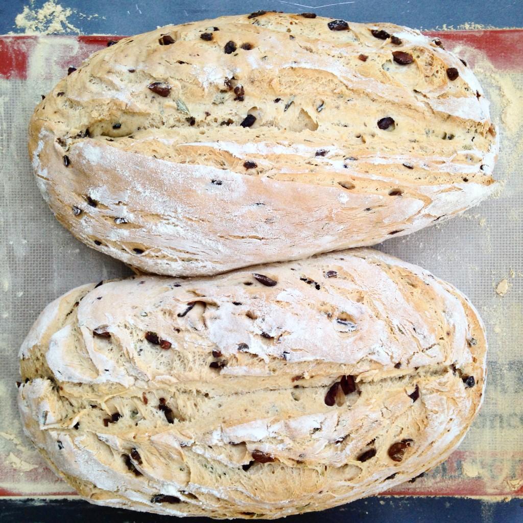 pão de ervas com azeitona 18