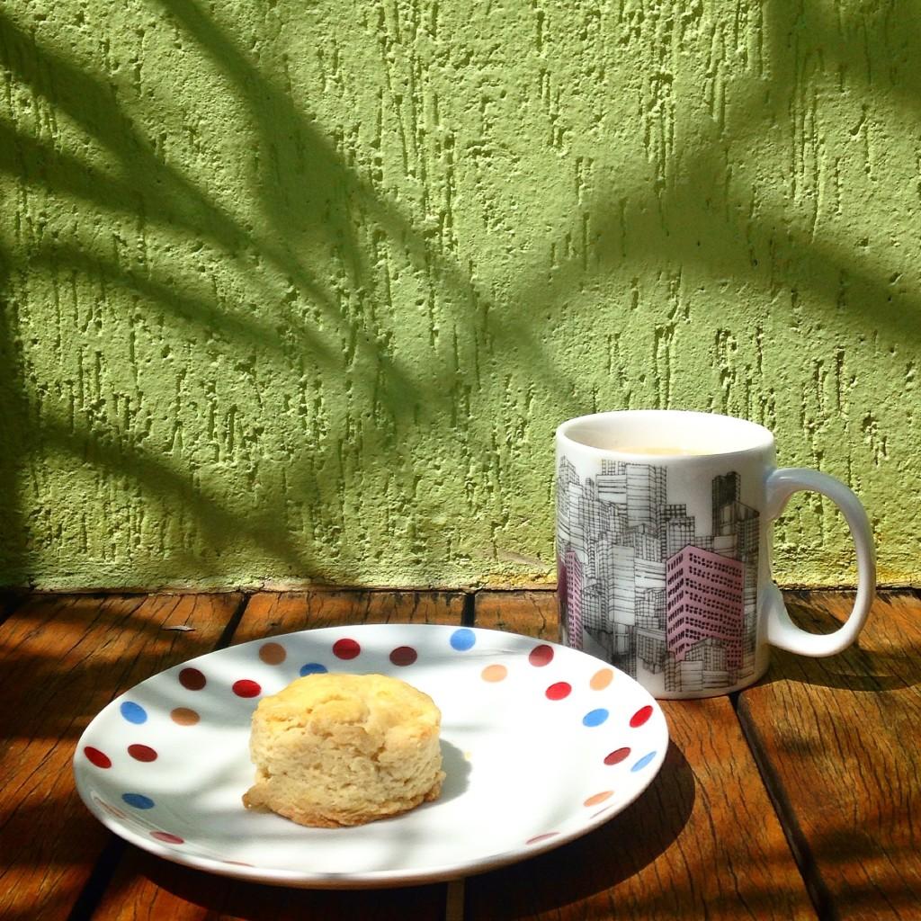 Biscuit – o pãozinho maravilha