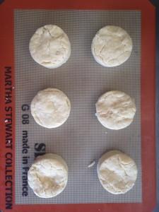 biscuit 52