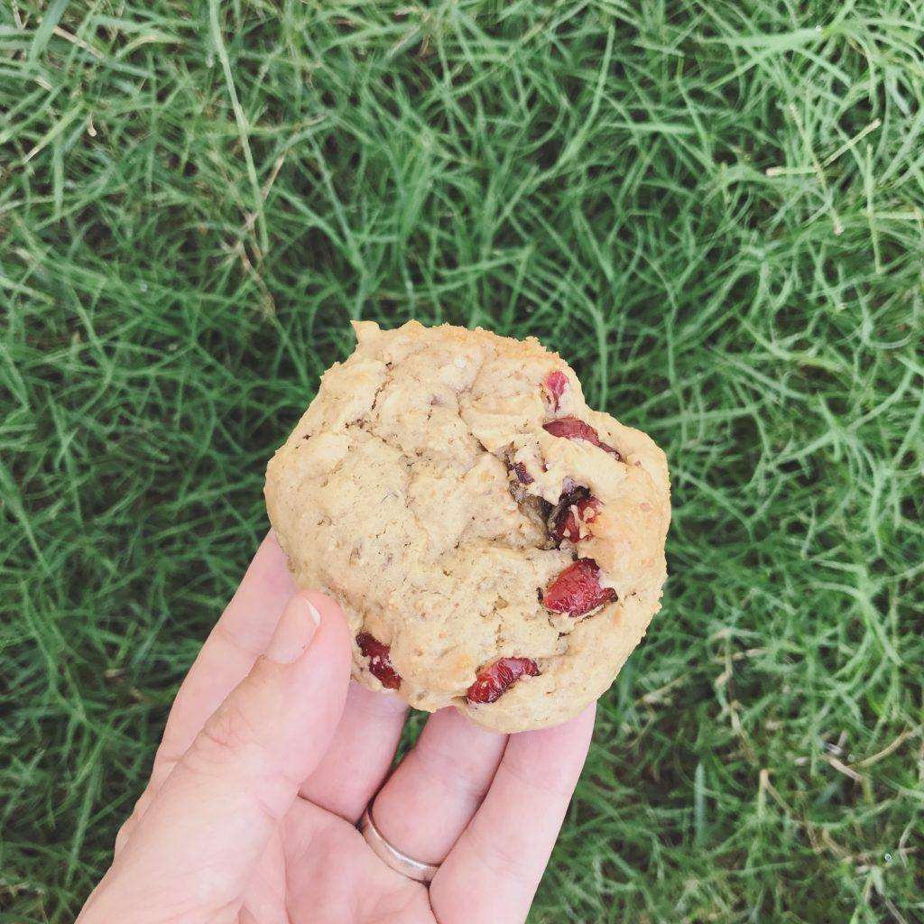 cookie de pasta de amendoim e aveia pra deixar o lanche da tarde mais feliz