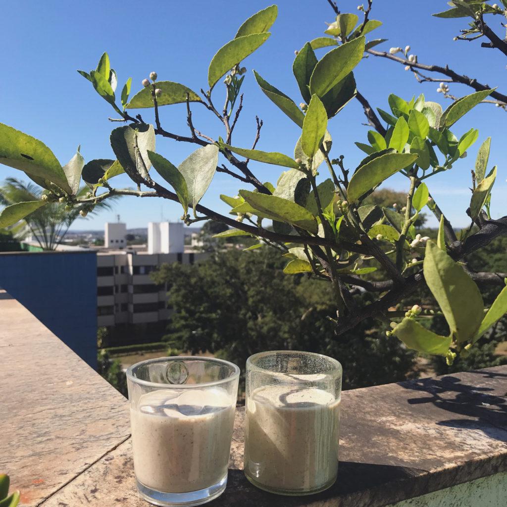 vitamina de banana com tâmaras – ou, como é bom ter um freezer e uma despensa caprichados!