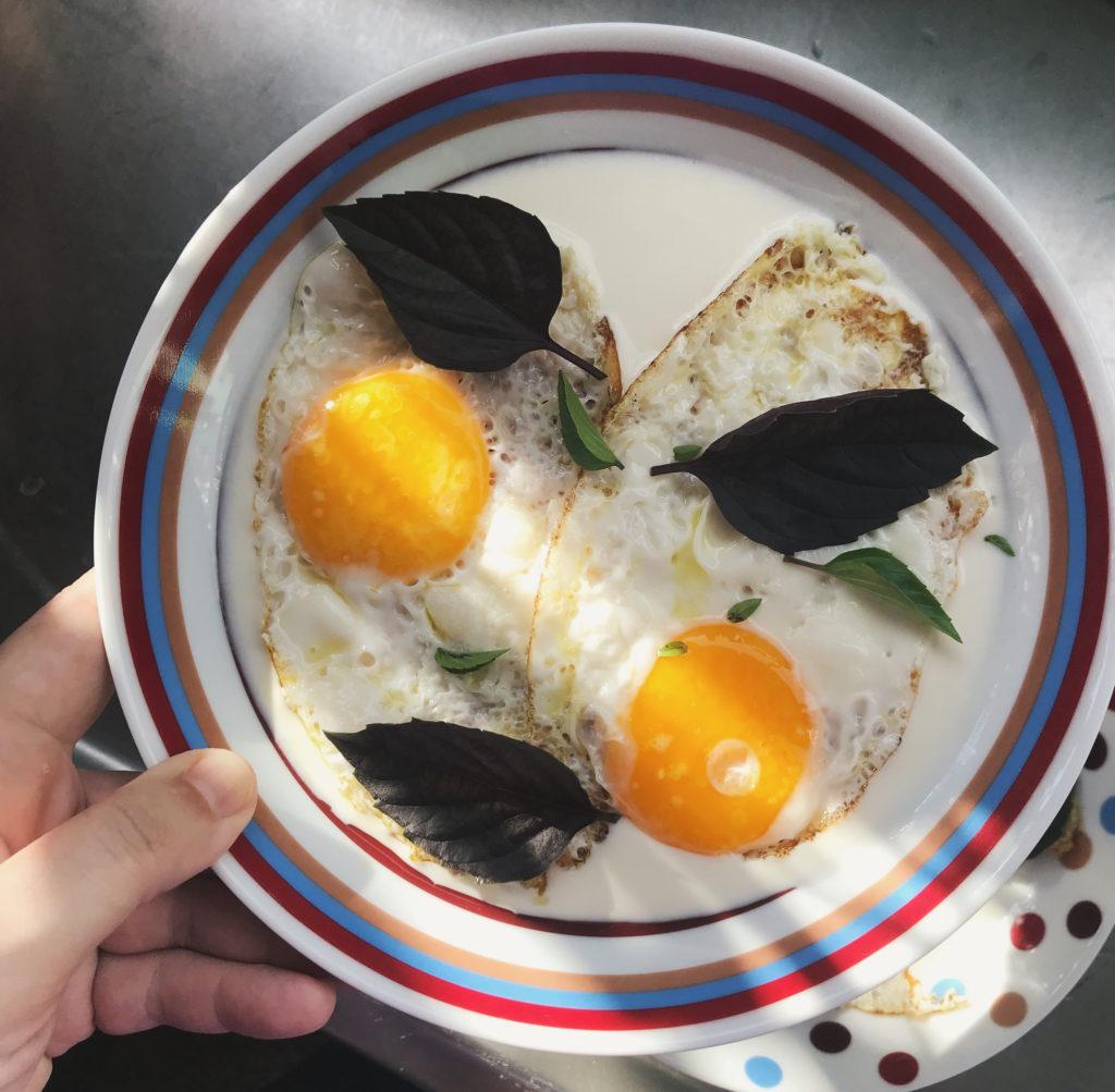 ovos no iogurte